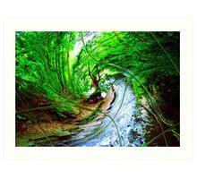 Willow Wizard ~ Commanding the Wave Art Print