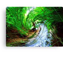 Willow Wizard ~ Commanding the Wave Canvas Print