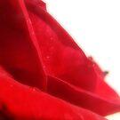 Red Velvet by Suni Pruett
