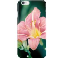 Daylily (Hemerocallis)  iPhone Case/Skin