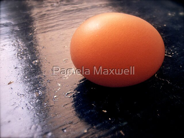 The Incredible Edible Egg by Pamela Maxwell