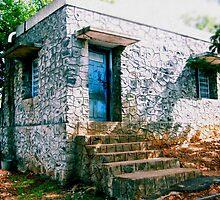 Blue Door by Coralie Alison