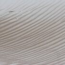 sand patterns and streaks by gaylene