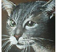 Cats Eyes by Cherie Roe Dirksen