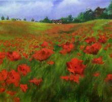poppy feild by Jennib