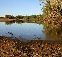 Tranquil Waters  by Robert Elliott