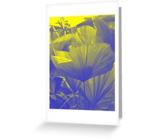 Frond : Photography by Alys Griffiths Greeting Card