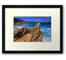 Tongue Pt from Starvation Flat Framed Print