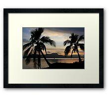 Tropical Palm trees at sunrise near Cairns, Australia.  Framed Print