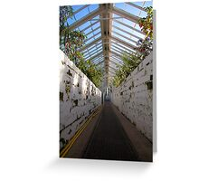 Victorian Glasshouse Greeting Card