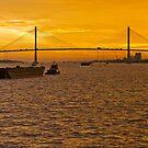 Mekong Delta Sunset 2 by Werner Padarin