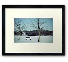 Frozen Solace  Framed Print