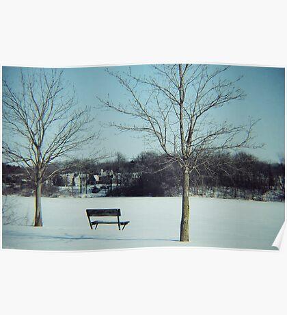 Frozen Solace  Poster