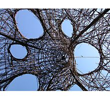 Wicker Sculpture Photographic Print