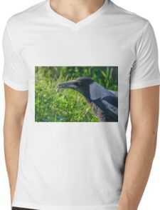 Magpie with Spider Mens V-Neck T-Shirt