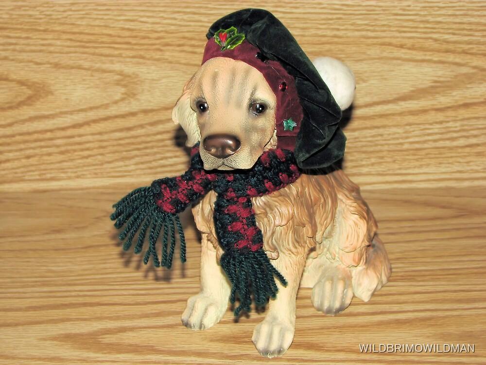 Puppy Love! by WILDBRIMOWILDMAN