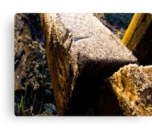 Hill Holt Frost Canvas Print