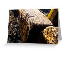 Hill Holt Frost Greeting Card