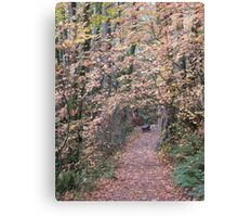 beckoning Canvas Print