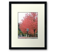 speed 30 Framed Print