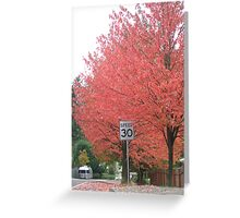 speed 30 Greeting Card