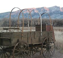 Wagon of long ago? by costerloh