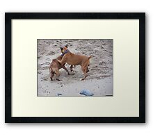 Toe to toe boxers. Framed Print