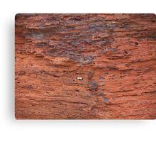 Australia, red rock  Canvas Print