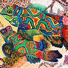 Mandarin Fish by patsarts