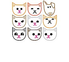 8 CATS 1 dog Pet lovers funny design Photographic Print