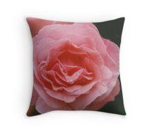 Royal Highness Rose Throw Pillow