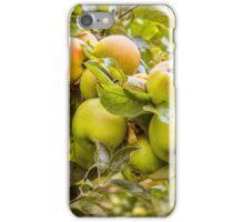 Little Green Apples iPhone Case/Skin