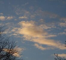 cloud by antwilliams