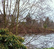 River Over Snohomish by Kat Miller
