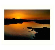 Karaaf Wetlands Art Print