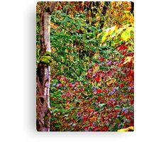 Washington Fall Canvas Print