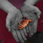 Open Hands (B&W) by Stephen Mitchell