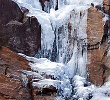 Frozen by Janet Gosselin
