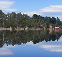 Huon River reflections. by terryk