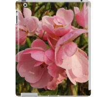 Beauty Behold from Chendque, China iPad Case/Skin