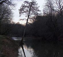 bear creek by budrfli