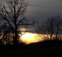 Natchez Sunset by budrfli