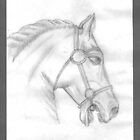 Horse head drawing by Rosa  D'Alessio