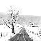 McGee Cove Road by © Joe  Beasley IPA
