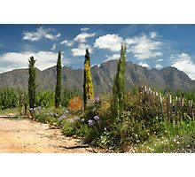 Franschhoek, Western Cape, South Africa Photographic Print