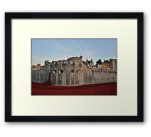 Poppies at the Tower of London - At Dusk Framed Print