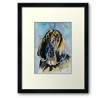 Bloodhound Framed Print