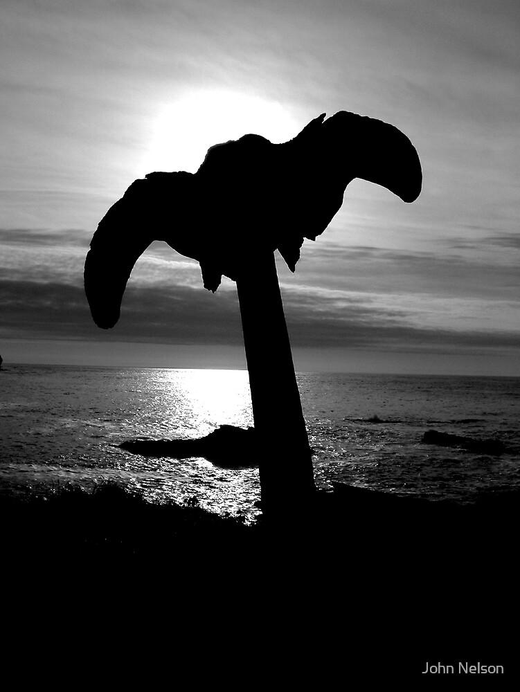 Atlantic Sunset by John Nelson