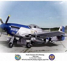"""North American P-51 """"Petie 2nd"""" by A. Hermann"""