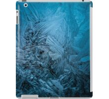 Frost Roses iPad Case/Skin